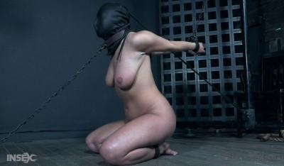 Big Tits Brunette Slave Enjoys Hardcore Bondage