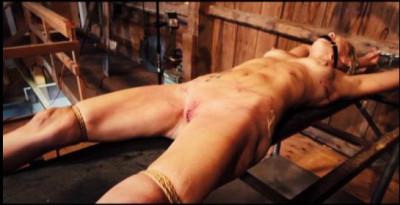 Sewed Cunt Torture – Slave Pig