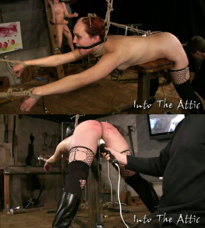 Bondage, suspension and torture for sexy naked bitch part 2