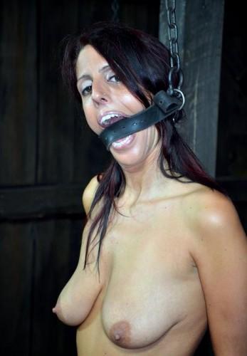 New Adventures In BDSM