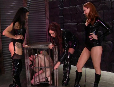 Mistress' Pain Party (full, bus, watch, week, humiliation)