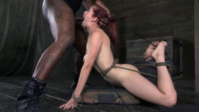 SexuallyBroken Flexible big breasted Penny Pax in a brutal back arch