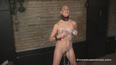 Chimera Bondage - Ariel Anderssen Part 2017-05 01_200