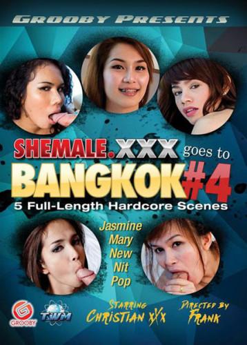 Shemale XXX Goes to Bangkok 4 (2015)