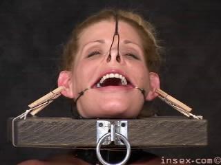 """Exclusiv Collection """"Insex 2000″. – 37 Best Clips."""
