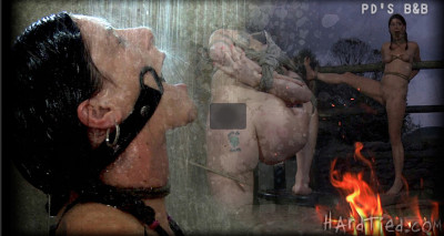 Hardtied — Sep 19, 2012 - PD's B&B
