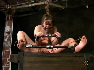 Insex Videos, Part 4 (2001-2007)