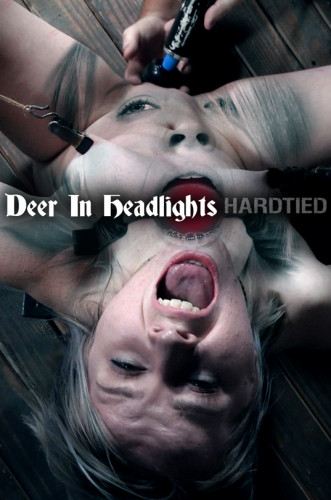Bambi Belle – Deer In Headlights