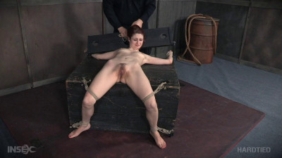Whipped Pussy