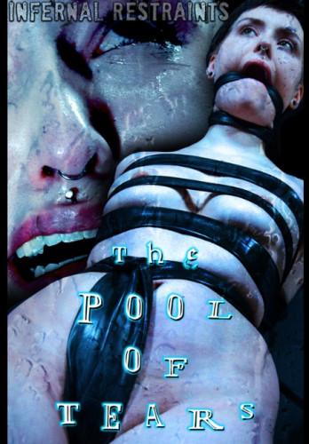 Description The Pool Of Tears