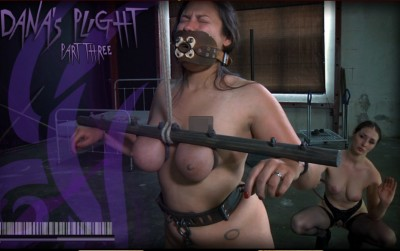 Dana's Plight Part Three - Dana Vixen