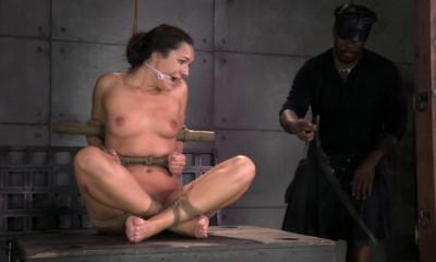 Punishing Paisley
