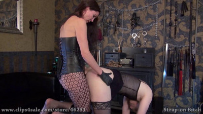 Mistress Susi - Small Strap-On For Slut Candy