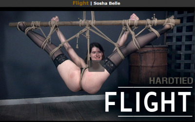 Hardtied – Nov 22, 2017 – Flight