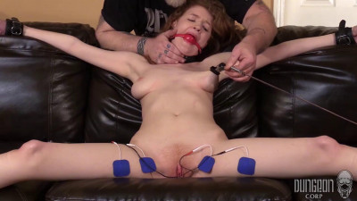 Abby Rains — Perfect Submission vol.3