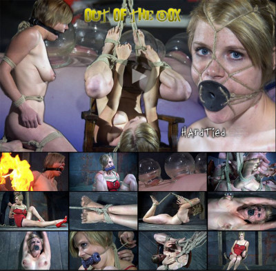 Hardtied – Out Of The Box – Tracy, Cyd Black