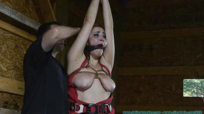 Description Barnyard Bondage for Riley - Her Ordeal Continues - Scene 1 - HD 720p
