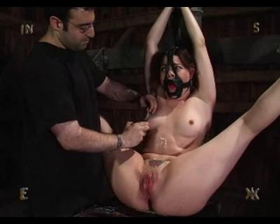 Insex - Dana 1