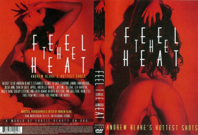 Description Andrew Blake - Feel The Heat(2004)