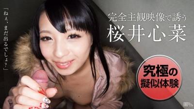 Kokona Sakurai (video, new, doggy style, fuck)