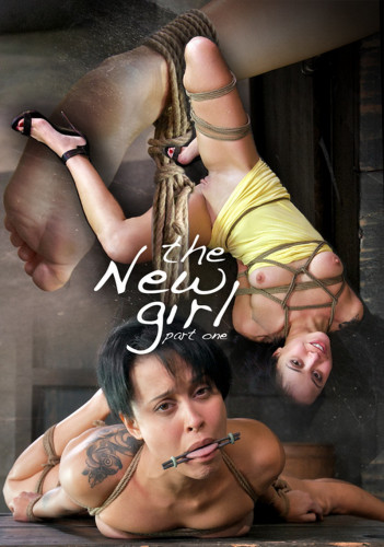 The New Girl 1