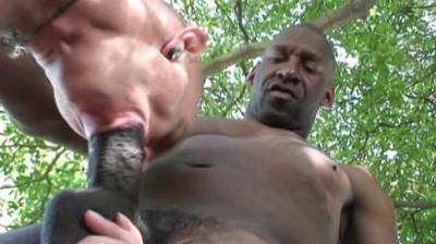 Huge cocks for bottom sluts
