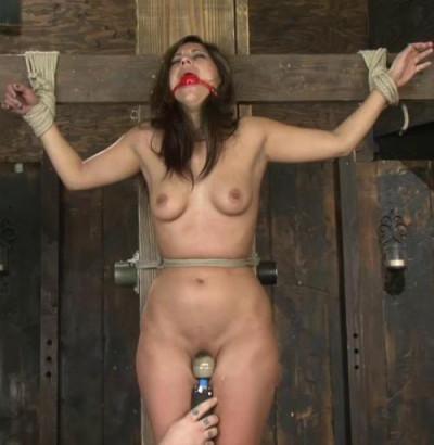 A Fine Day Of BDSM ( 2013) SiteRip HD 720p