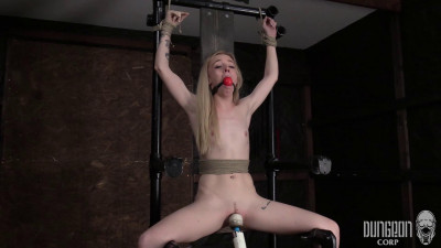 HD Bdsm Sex Videos Alone with Two Sickos