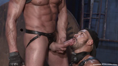 Raging Stallion - New Collection 26  Clips.