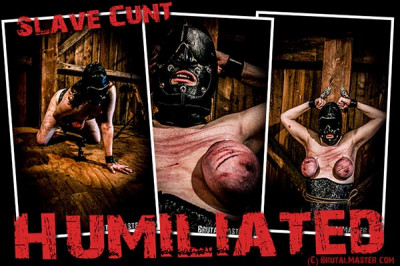 Slave Cunt – Humiliated