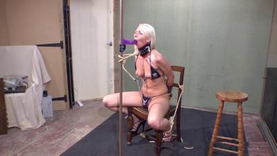Chimera's Pornstars – Tracey Lain, Part 2