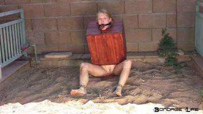 Mud Box