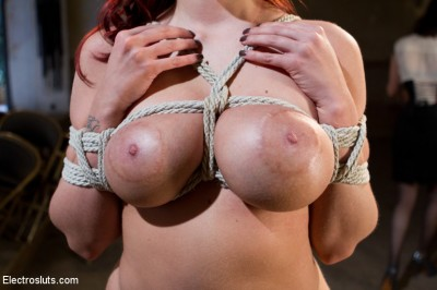 Description Kelly Divine VS Stanley