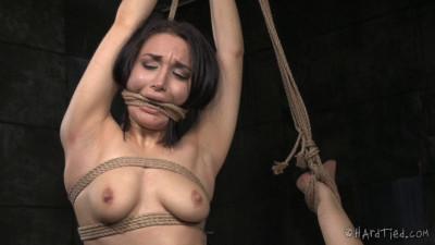 Caged Bird – Gabriella Paltrova, Jack Hammer