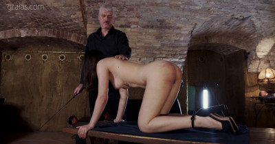 Obedience Training – Part 5