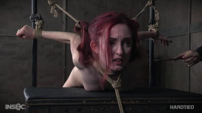 Penny Lay Tied