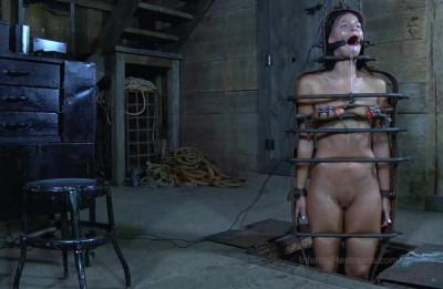 Destroyed Obedient Slave