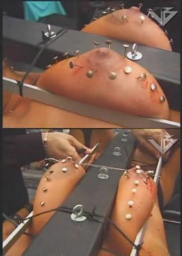 The best extreme bdsm for you