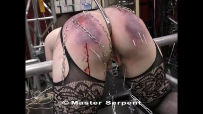 Master Serpent – Am video 5