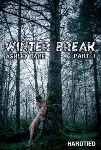 Description Winter Break Part 1 - Ashley Lane