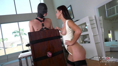Description Alina Lopez Drained Gimp Balls(2019)