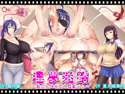 Sex Maze the Animation (End Of Year Discount)