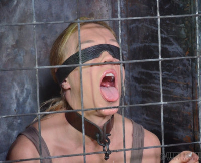 RTB – Darling Blindfolded, Caged And Tagteamed By Dick – April 1, 2014 – HD