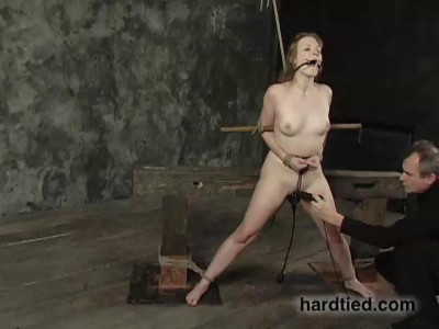 Vip Gold Collection Of HardTied. 33 Clips. Part 5.