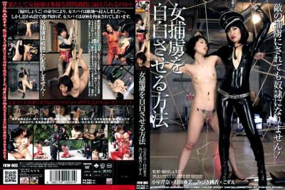 Fkw-003 - Japanese Female Interrogation . Various