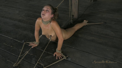 Top Starlet Remy Lacroix Gets Bound