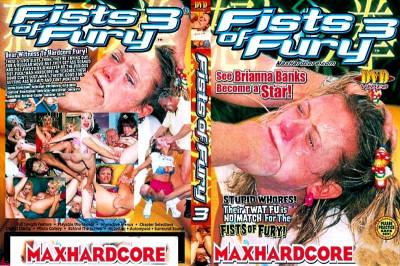Description Fists Of Fury Part 3 - MaxHardcore