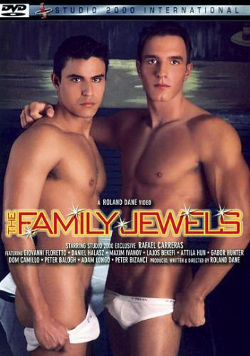 Description The Family Jewels
