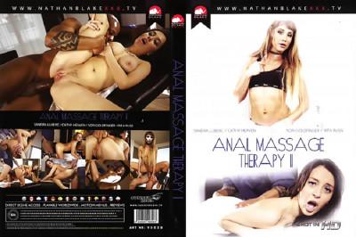 Description Anal Massage Therapy Vol 2
