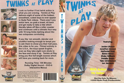 Description Twinks at Play